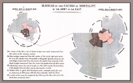 Florence Nightingale's Rose  (or Polar Area) Diagram of the Causes of Mortality in the British Army of the Crimean War (1858)